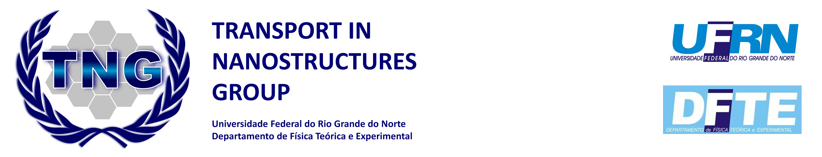 Transport in Nanostructures Group